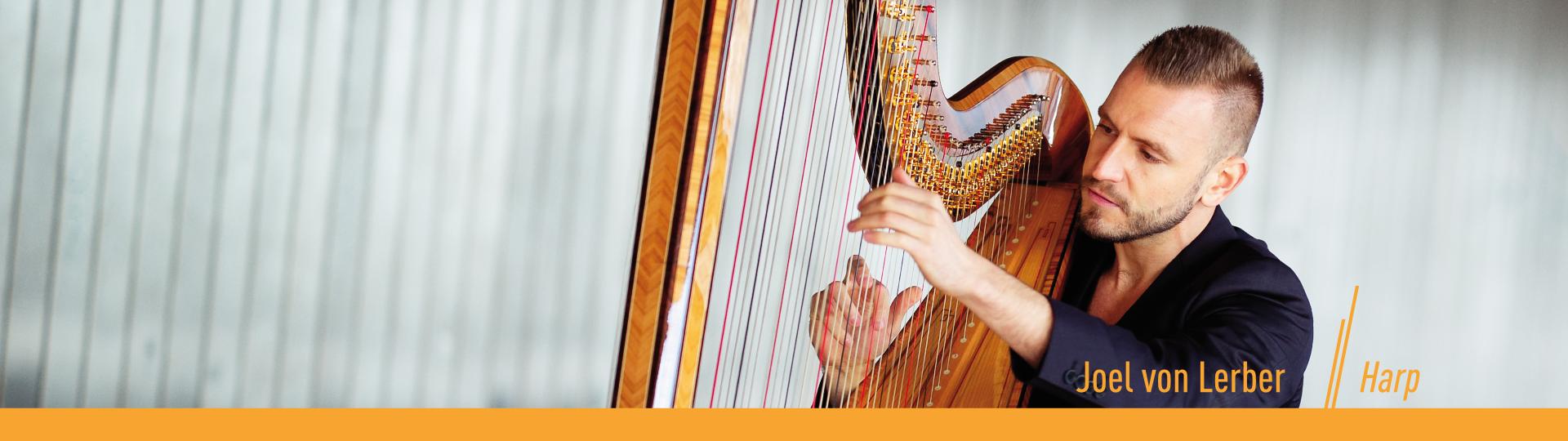 """Artwork """"harp"""" Joel von Lerber"""